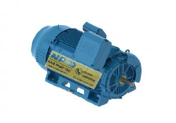 Động cơ điện W50